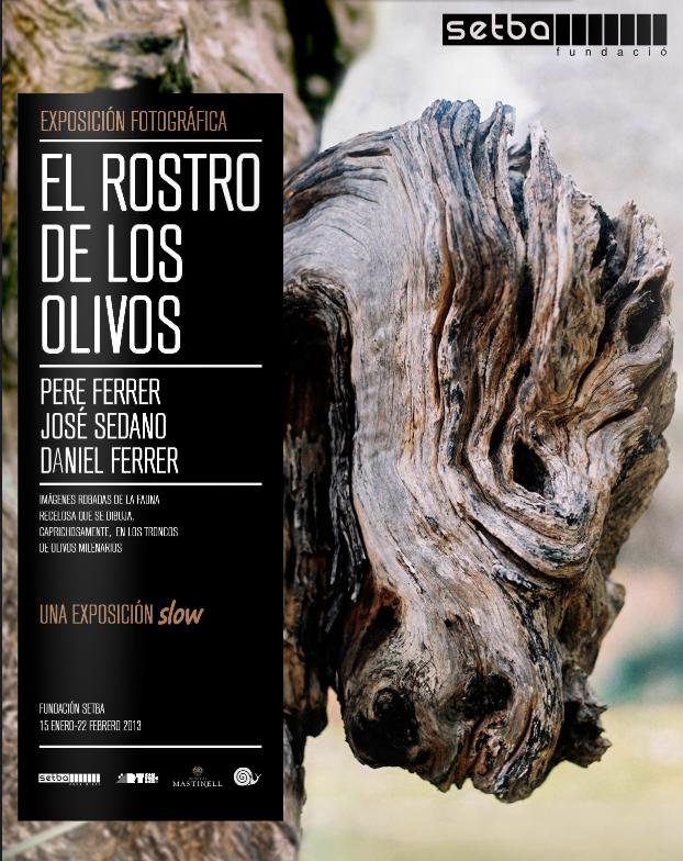 Cartel Expo Olivos