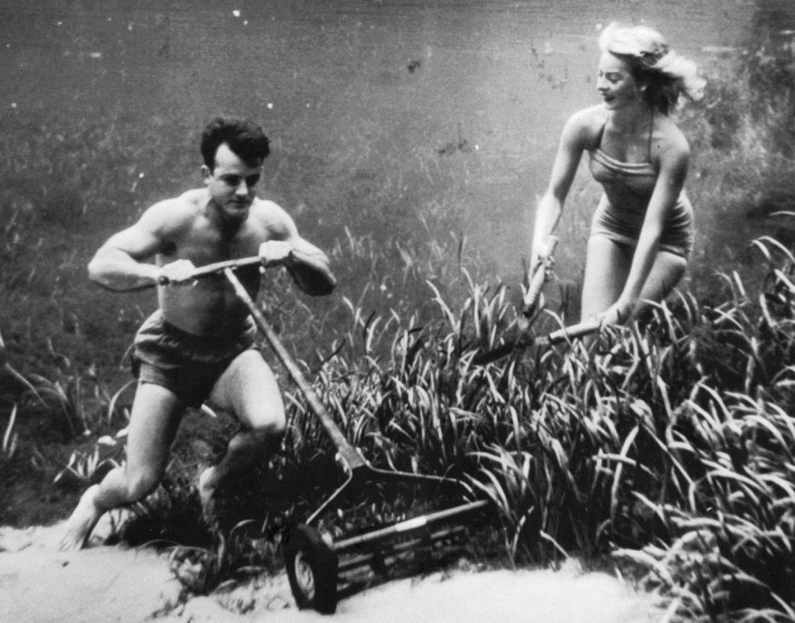 Underwater. Bruce Mozert.